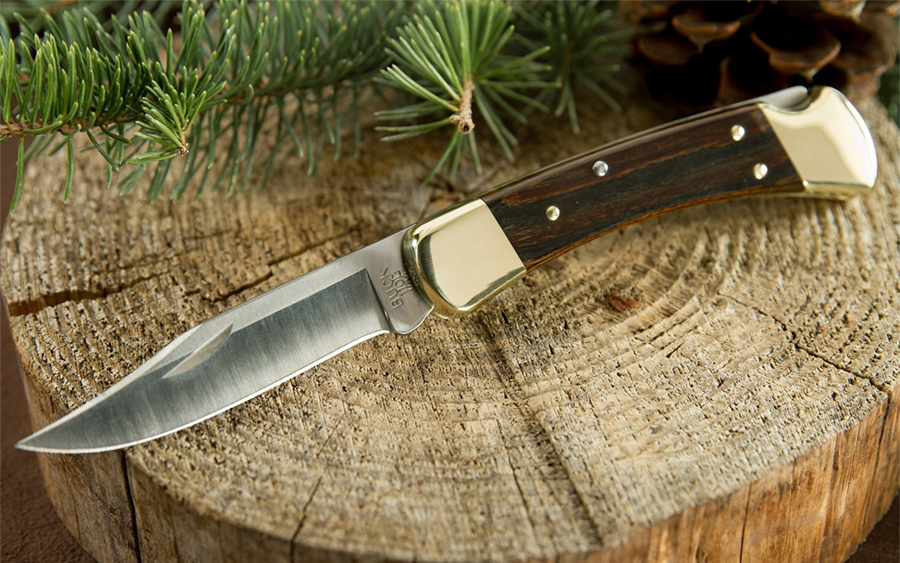 Buck 110 Folding Hunter Knife