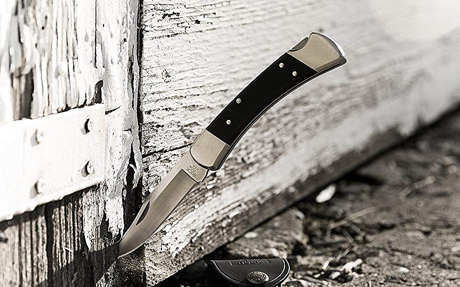 Buck 110 Folding Hunter Pro